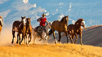 ranchers on horseback in Wyoming